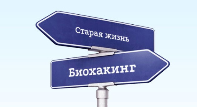 Биохакинг вебинар Ходченков